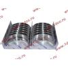 Вкладыши коренные стандарт +0.00 (14шт) H2/H3 HOWO (ХОВО) VG1500010046 фото 3 Бийск